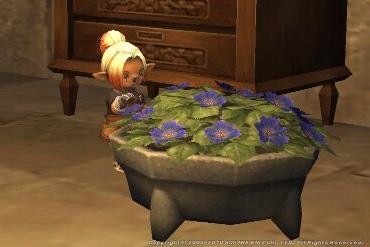 青色の石鉢